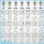 Best Bodyweight Exercises Pdf_2.jpg