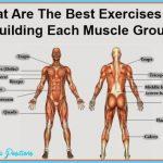 Best Exercises Per Body Part_6.jpg