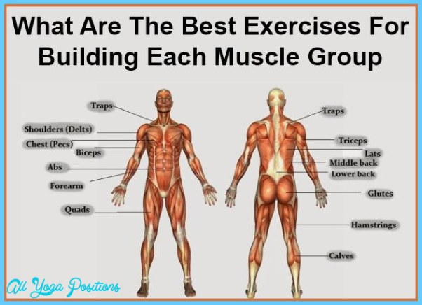 Best exercises per body part all yoga positions