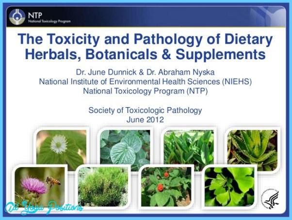 herbal-medicine-safety-studies-at-the-ntp-1-638.jpg?cb=1443449271