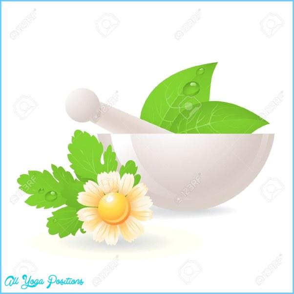 herbal-supplement-clipart-1.jpg