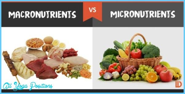 macronutrients-vs-micronutrients-800x400.jpg