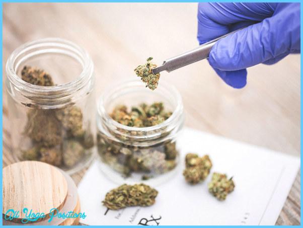 Medical_Marijuana_732x549-thumbnail.jpg