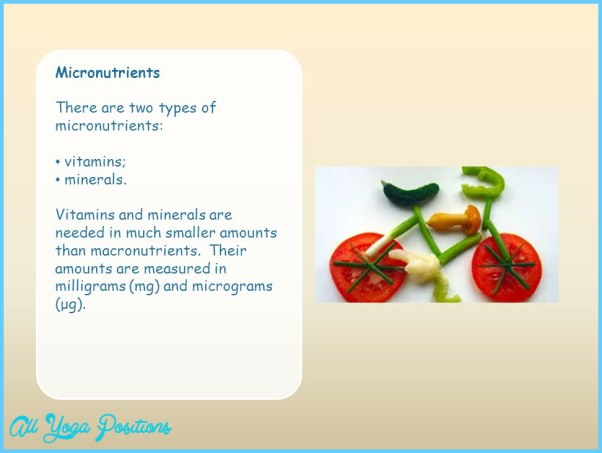 Micronutrients+There+are+two+types+of+micronutrients%3A+vitamins%3B+minerals..jpg
