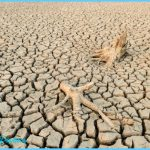 our-world-water-shortage-global-warming-problem-causes-droughts-shortages-food-50519936.jpg