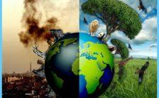 Preventing Air Pollution_15.jpg