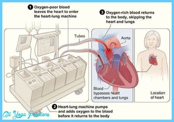 THE HEART-LUNG CONNECTION_10.jpg