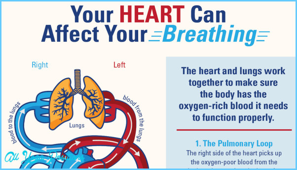 THE HEART-LUNG CONNECTION_7.jpg