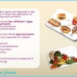 What Are Micronutrients? - Definition, Types, Foods_0.jpg