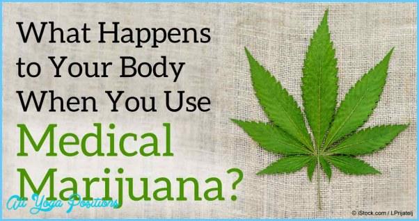 what-happens-body-use-marijuana-fb.jpg
