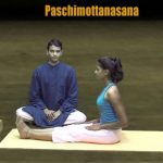 general level 4 yogastretch your entire body 06