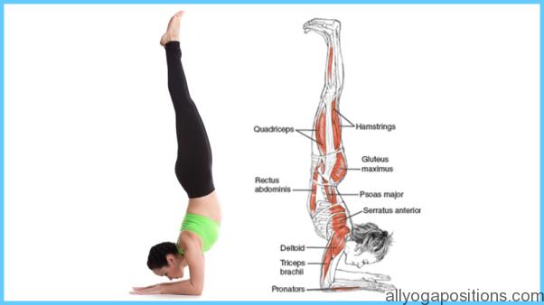 How to Do the Forearm Balance Ashtanga Pinchamayur Asana_11.jpg