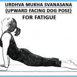 How to Do Upward Facing Dog Urdhva Mukha Svan Asana_10.jpg
