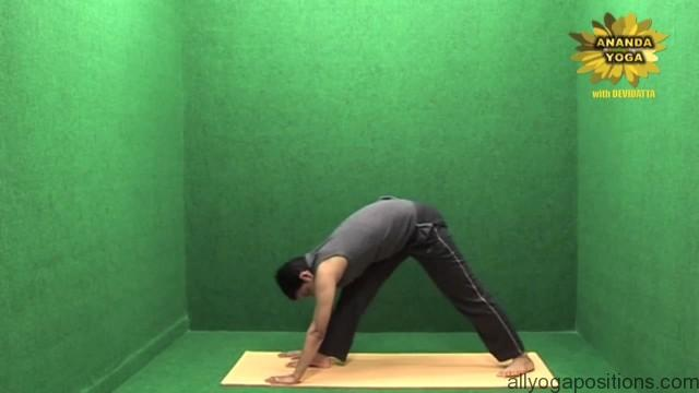 power yoga sequence 15