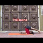 yoga beginners and beyond 40 min poses sequence vyfhealth 194