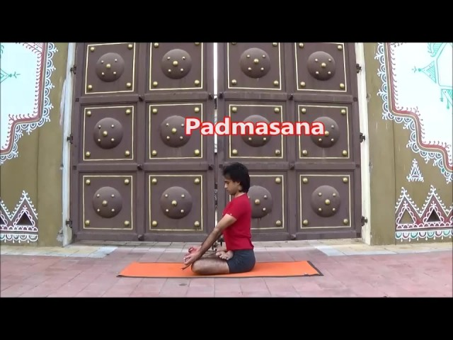 yoga beginners and beyond 40 min poses sequence vyfhealth 219