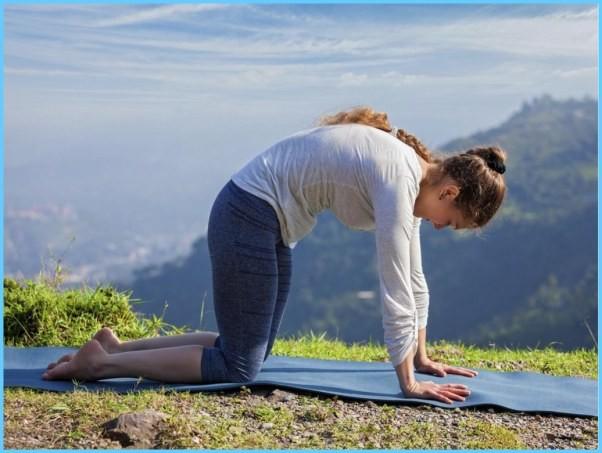Yoga Exercise Dwipad Marjar Asana_2.jpg