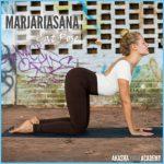 Yoga Exercise Dwipad Marjar Asana_3.jpg