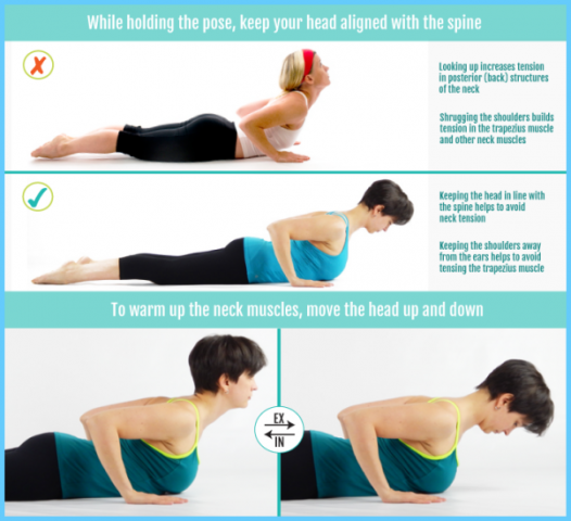 Yoga for Beginners Cure Your Neck Pain_13.jpg