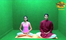 yoga for beginners reduce stress 13