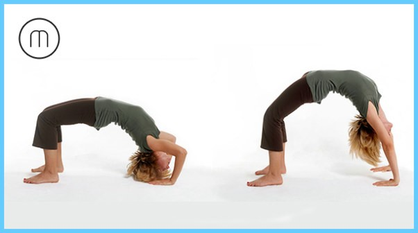 Yoga for Immune System_1.jpg