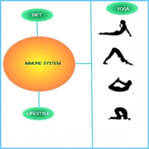 Yoga for Immune System_11.jpg