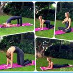 Yoga for Immune System_6.jpg