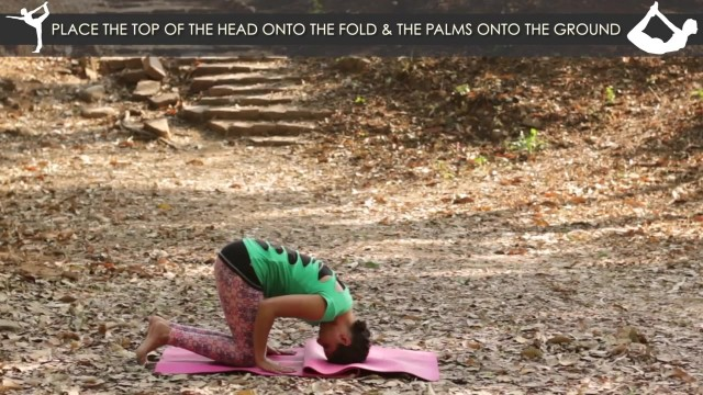 yoga poses tripod headstand workout tutorial i 4 14