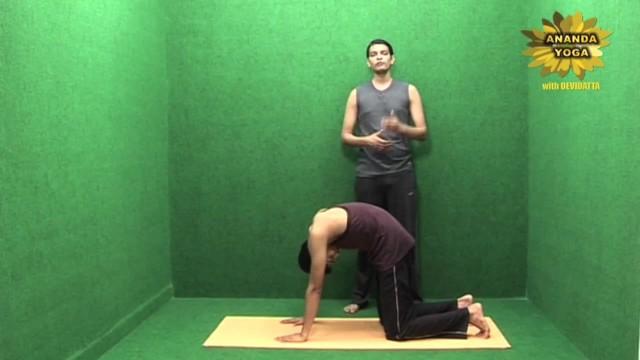 yoga to increase body stamina and flexibility 10