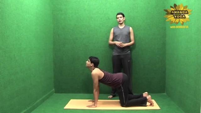 yoga to increase body stamina and flexibility 11