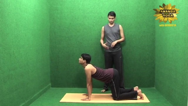yoga to increase body stamina and flexibility 12