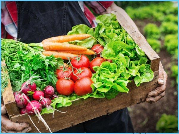 Antioxidants for Cervical Dysplasia_8.jpg