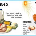 B12 in Foods  VITAMIN B12_4.jpg