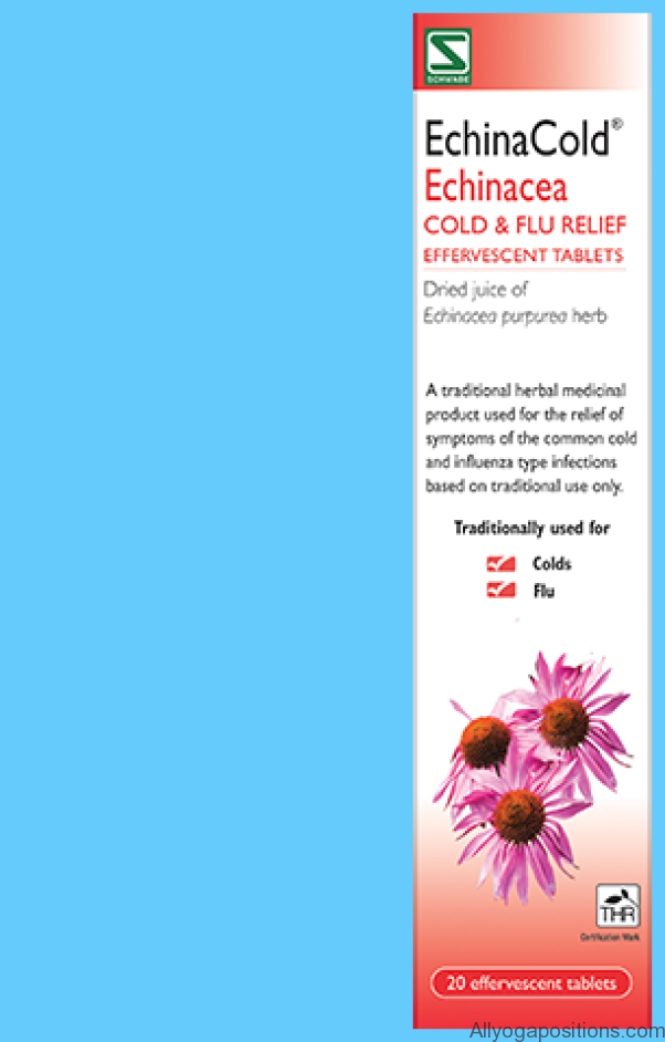 Echinacea Uses, Side Effects, Interactions, Dosage, and Warning_12.jpg