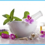 Echinacea Uses, Side Effects, Interactions, Dosage, and Warning_5.jpg