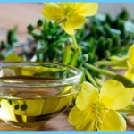 Essential Fats and Evening Primrose Oil for Premenstrual Syndrome_19.jpg