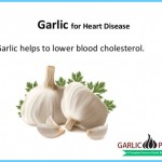 Garlic for Heart Disease_2.jpg