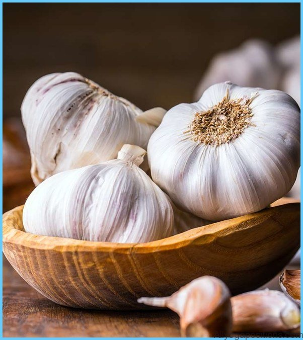 Garlic Uses, Side Effects, Interactions, Dosage, and Warning_4.jpg