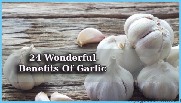 Garlic Uses, Side Effects, Interactions, Dosage, and Warning_5.jpg