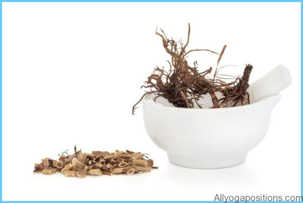 HERBAL REMEDIES Valerian for Insomnia_16.jpg