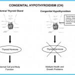 HYPOTHYROIDISM TREATMENT_7.jpg