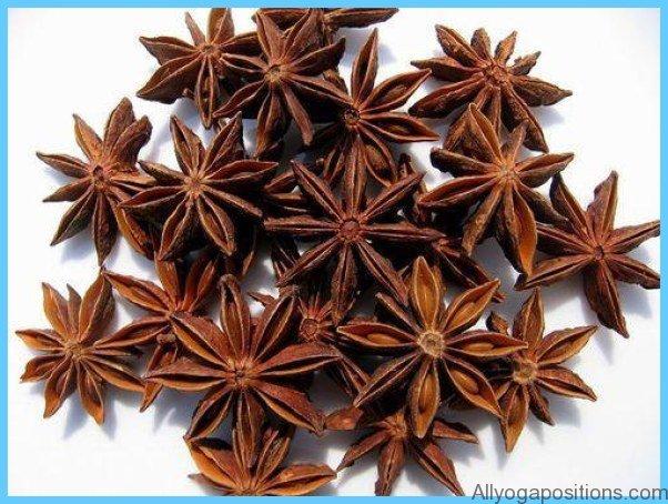 Star Anise_5.jpg