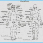 The Secrets of Marmas Vital Points of Human Body_11.jpg