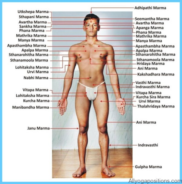 The Secrets of Marmas Vital Points of Human Body_13.jpg