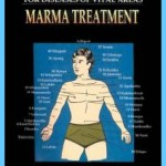 The Secrets of Marmas Vital Points of Human Body_15.jpg