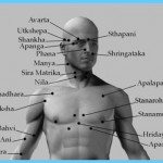 The Secrets of Marmas Vital Points of Human Body_16.jpg