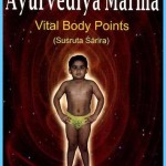 The Secrets of Marmas Vital Points of Human Body_2.jpg