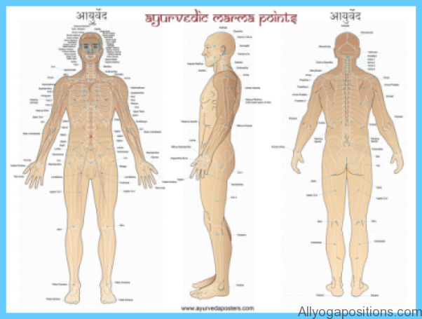 The Secrets of Marmas Vital Points of Human Body_6.jpg