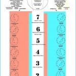 THE SEVEN MAJOR CHAKRAS_7.jpg