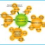 Vitamin E for Heart Disease_8.jpg